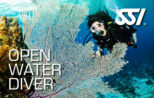 03 open water diver title